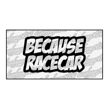 Because Race Car 10 cm