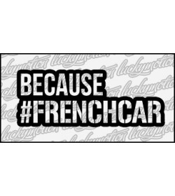 Because Frenchcar 15 cm